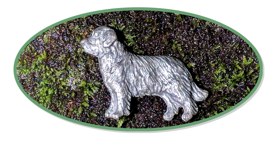 Newfoundland Jewelry, Newfie brooch in sterling silver on natural stone and moss backdrop.